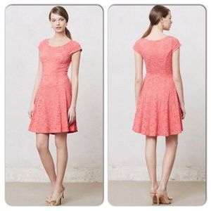Anthro Maeve Dayflower Lace Stretchy Dress Small